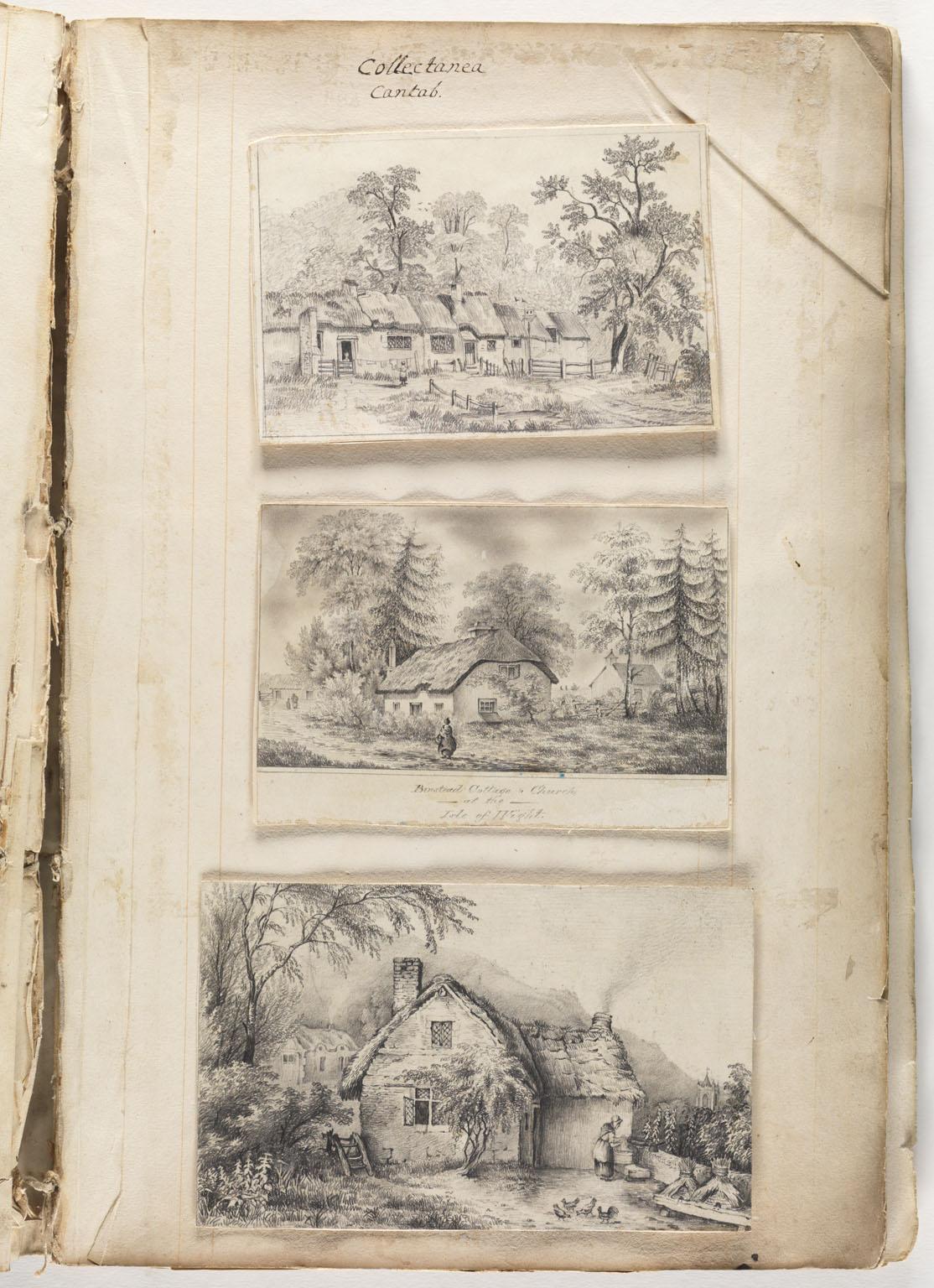 Selection: [Album of amateur prints by Charlton Wollaston...]